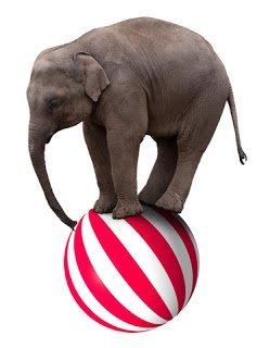 como comerse un elefante