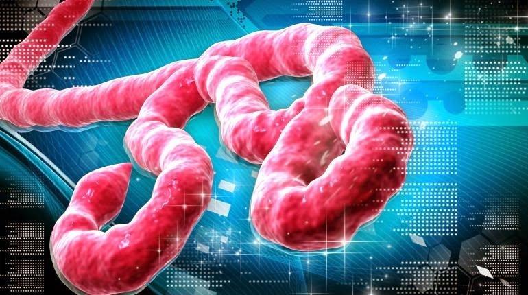 Lean y el virus del Ebola